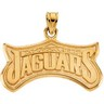 Jacksonville Jaguars Pendants and Earrings