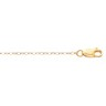 1mm Lasered Titan Gold  Curb Chain with Lobster Clasp Ref 349933